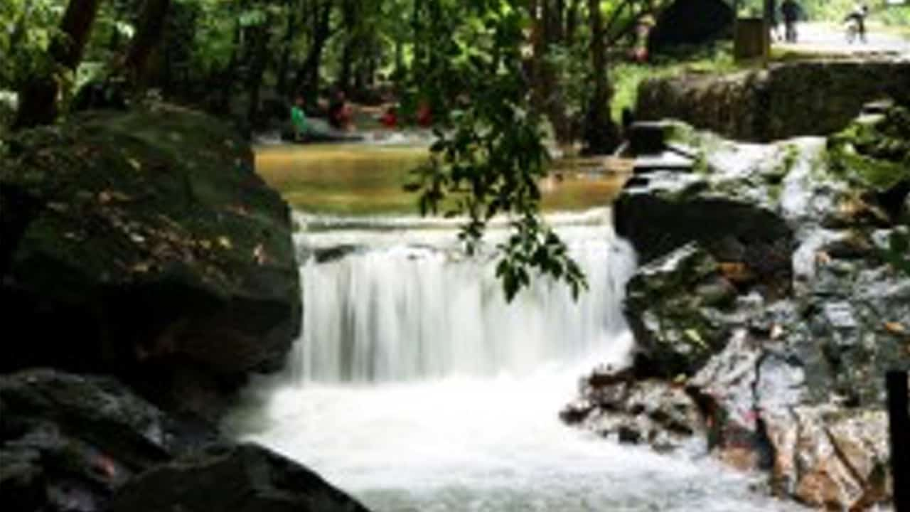 Ampang Forest Eco Park