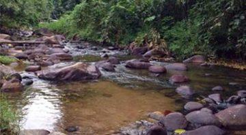 Sungai Pangsun